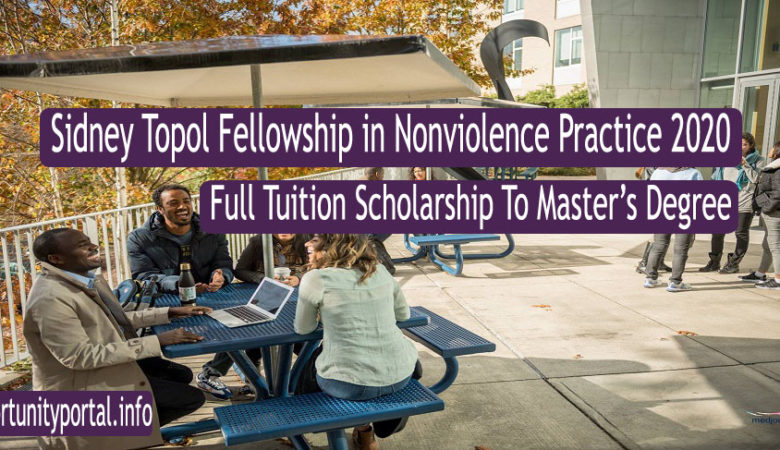 Sidney Topol Fellowship in Nonviolence Practice 2020