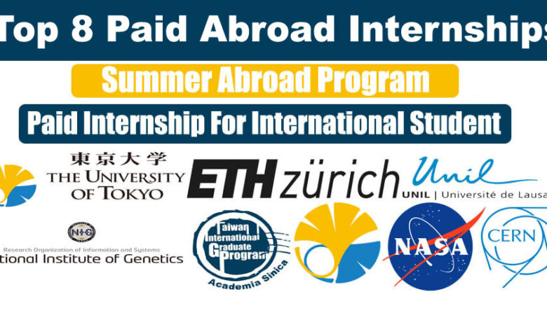 Top 8 Paid Abroad Internships For International Student